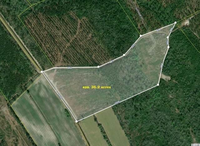 TBD Cedar Dr., Nichols, SC 29581 (MLS #2112757) :: Leonard, Call at Kingston
