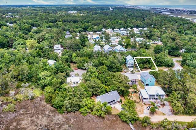 48 Seagrass Ct., Pawleys Island, SC 29585 (MLS #2112966) :: The Lachicotte Company