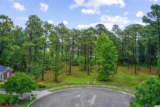 1000 Wigeon Dr., Conway, SC 29526 (MLS #2113252) :: Welcome Home Realty