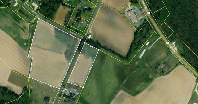 TBD1 Mount Olive Church Rd., Green Sea, SC 29545 (MLS #2114014) :: Armand R Roux | Real Estate Buy The Coast LLC