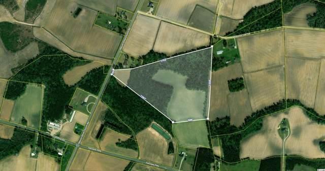 TBD2 Mount Olive Church Rd., Green Sea, SC 29545 (MLS #2114015) :: Armand R Roux | Real Estate Buy The Coast LLC