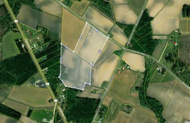TBD Little Mill Rd., Nichols, SC 29581 (MLS #2114039) :: Armand R Roux | Real Estate Buy The Coast LLC