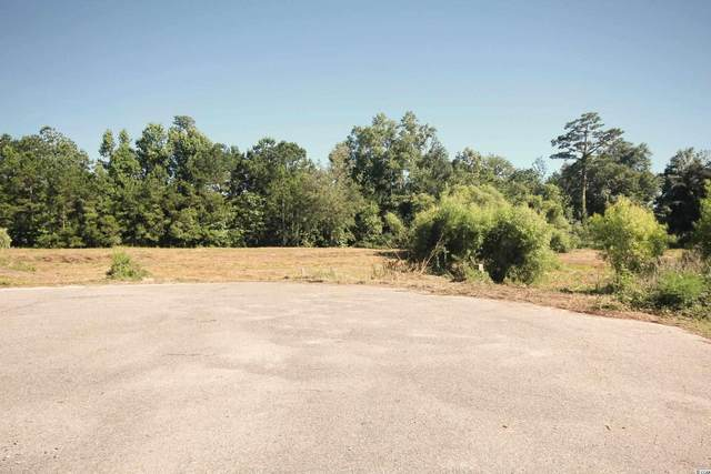 128 Triston Ct., Little River, SC 29566 (MLS #2114533) :: Sloan Realty Group