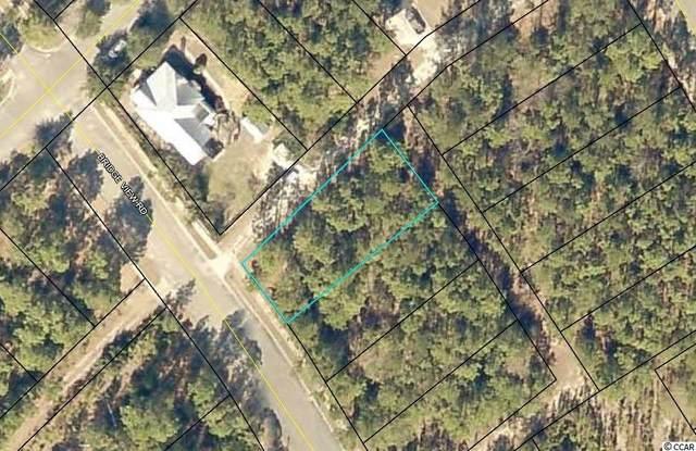 179 Bridge View Rd., Georgetown, SC 29440 (MLS #2114740) :: Duncan Group Properties