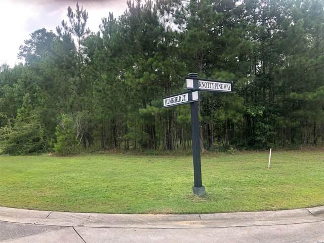4 Plumbfield Ct., Murrells Inlet, SC 29576 (MLS #2114827) :: Garden City Realty, Inc.