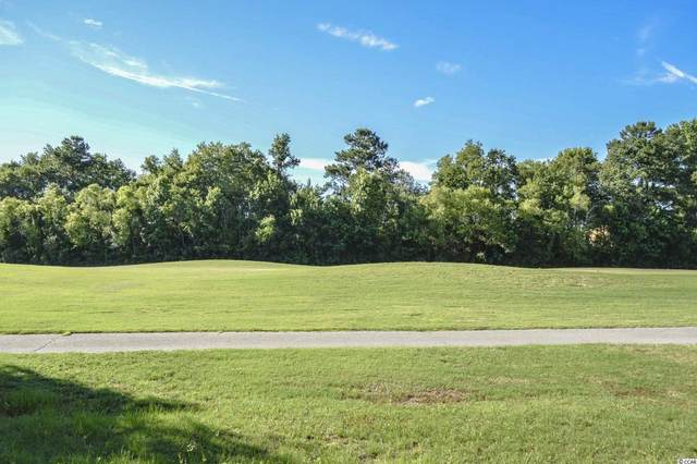 1321 Whooping Crane Dr., Conway, SC 29526 (MLS #2115204) :: Jerry Pinkas Real Estate Experts, Inc
