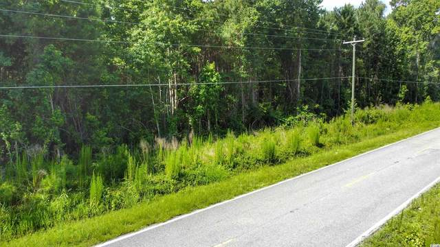 TBD Walker Rd., Georgetown, SC 29440 (MLS #2115273) :: Grand Strand Homes & Land Realty
