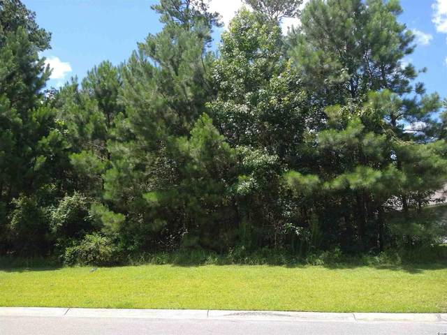 641 Timber Creek Dr., Loris, SC 29569 (MLS #2115505) :: Leonard, Call at Kingston