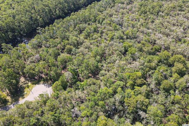 Lot 16 Black Water Cove, Conway, SC 29526 (MLS #2115647) :: Jerry Pinkas Real Estate Experts, Inc