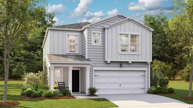 508 Salty Pine Dr., Myrtle Beach, SC 29588 (MLS #2116097) :: The Lachicotte Company