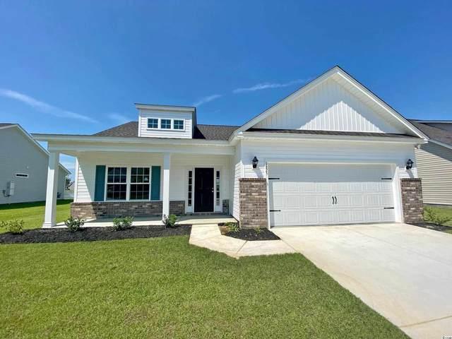 989 Francis Parker Rd., Georgetown, SC 29440 (MLS #2116114) :: BRG Real Estate