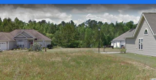 Lot 43 Blue Rock Dr., Longs, SC 29568 (MLS #2116251) :: Sloan Realty Group