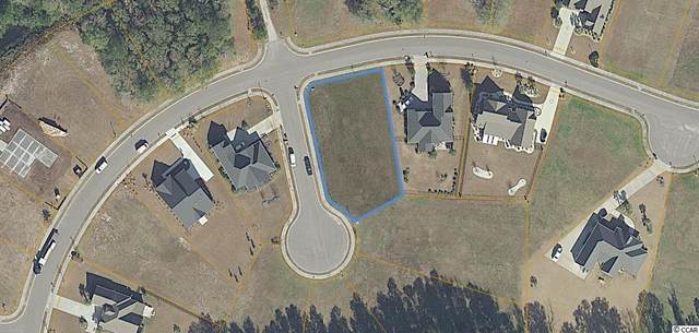 1008 Whimbrel Ct., Conway, SC 29526 (MLS #2116597) :: The Litchfield Company