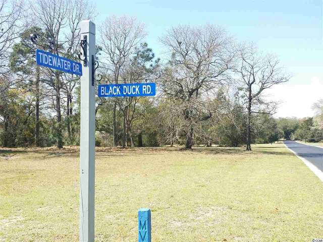 lot 51 Black Duck Rd., Pawleys Island, SC 29585 (MLS #2116836) :: Hawkeye Realty