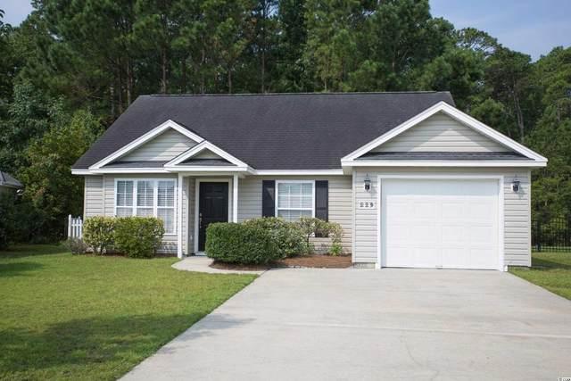 229 Palladium Dr., Surfside Beach, SC 29575 (MLS #2116882) :: Jerry Pinkas Real Estate Experts, Inc