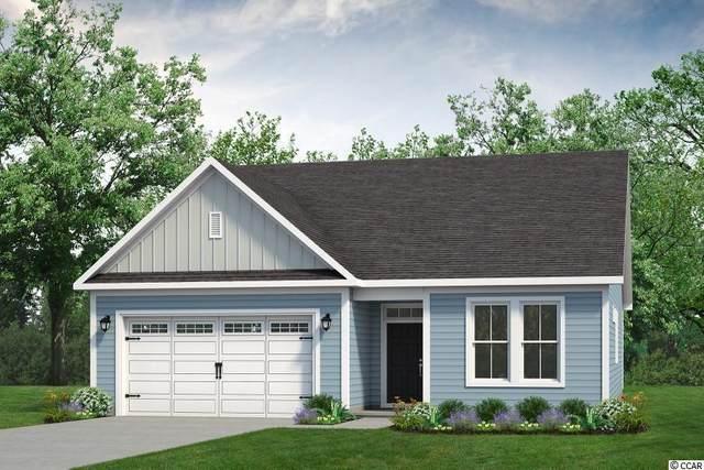 804 Hackberry Way, Longs, SC 29568 (MLS #2117001) :: Jerry Pinkas Real Estate Experts, Inc