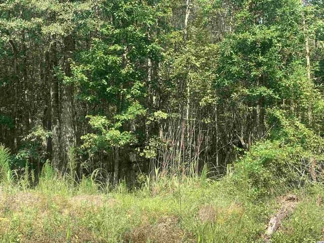 TBT Tad Rd., Andrews, SC 29510 (MLS #2117051) :: Jerry Pinkas Real Estate Experts, Inc
