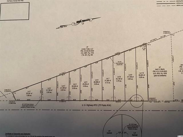 Lot 4 Highway 701 South, Conway, SC 29526 (MLS #2117113) :: Jerry Pinkas Real Estate Experts, Inc