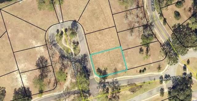 54 Rosebank Rd., Georgetown, SC 29440 (MLS #2117139) :: Jerry Pinkas Real Estate Experts, Inc