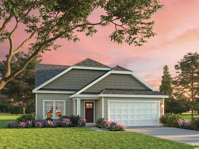 66 Leaflet Loop, Pawleys Island, SC 29585 (MLS #2117220) :: Jerry Pinkas Real Estate Experts, Inc