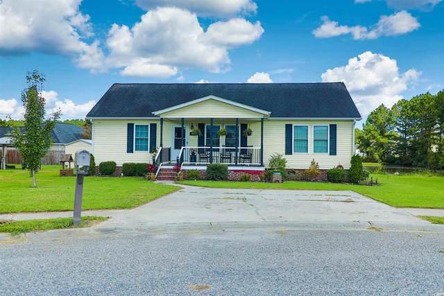 1111 Blue Juniper Ct., Conway, SC 29527 (MLS #2117978) :: Jerry Pinkas Real Estate Experts, Inc