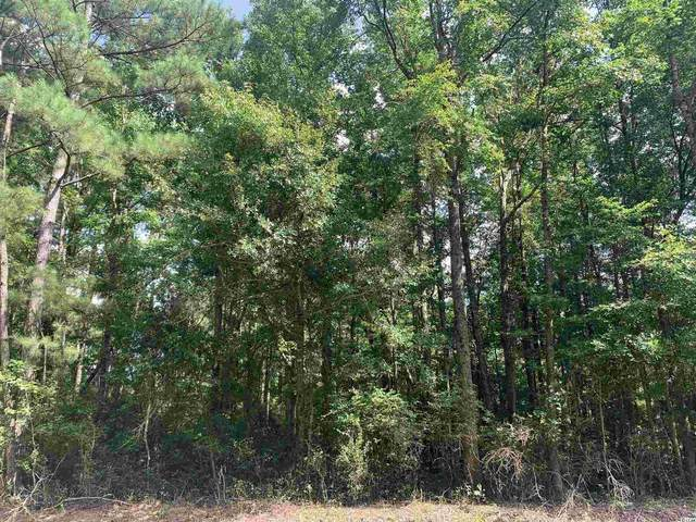 Tbt Red Rd., Kingstree, SC 29556 (MLS #2118034) :: Jerry Pinkas Real Estate Experts, Inc