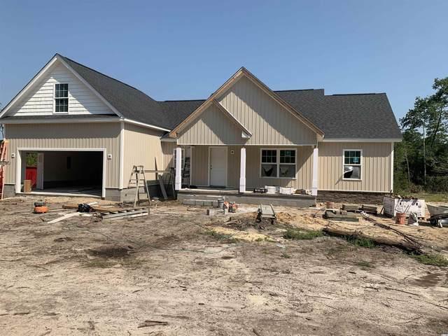 4001 Highway 905, Conway, SC 29526 (MLS #2118399) :: Duncan Group Properties