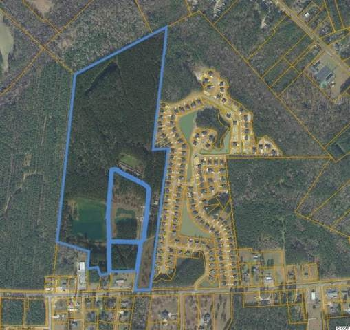 3972 Highway 378, Conway, SC 29527 (MLS #2119011) :: Jerry Pinkas Real Estate Experts, Inc