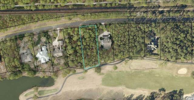 Wallace Pate Dr., Georgetown, SC 29440 (MLS #2119464) :: James W. Smith Real Estate Co.