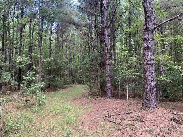TBT Union Church Rd., Salters, SC 29590 (MLS #2119643) :: Jerry Pinkas Real Estate Experts, Inc
