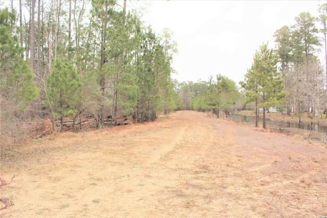 TBD Pitch Landing Rd., Conway, SC 29527 (MLS #2119878) :: Jerry Pinkas Real Estate Experts, Inc