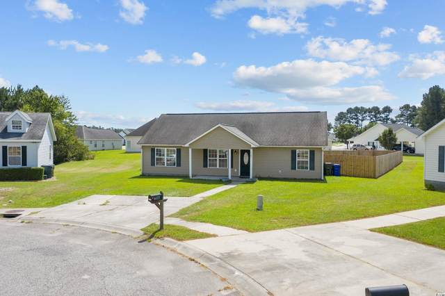 1103 Blue Juniper Ct., Conway, SC 29527 (MLS #2120001) :: Jerry Pinkas Real Estate Experts, Inc