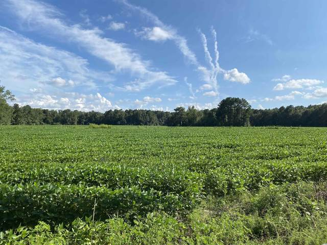 TBD Squire Rd., Andrews, SC 29510 (MLS #2120157) :: Grand Strand Homes & Land Realty