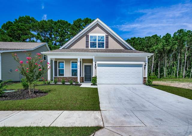 1249 Pyxie Moss Dr., Little River, SC 29566 (MLS #2120272) :: Jerry Pinkas Real Estate Experts, Inc