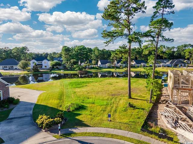 1005 Clamour Ct., Conway, SC 29526 (MLS #2120297) :: Leonard, Call at Kingston