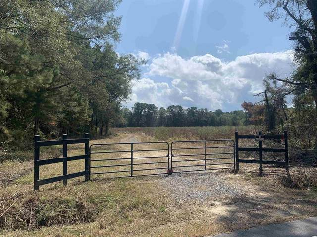 TBT Blakely Rd., Salters, SC 29590 (MLS #2120488) :: Grand Strand Homes & Land Realty