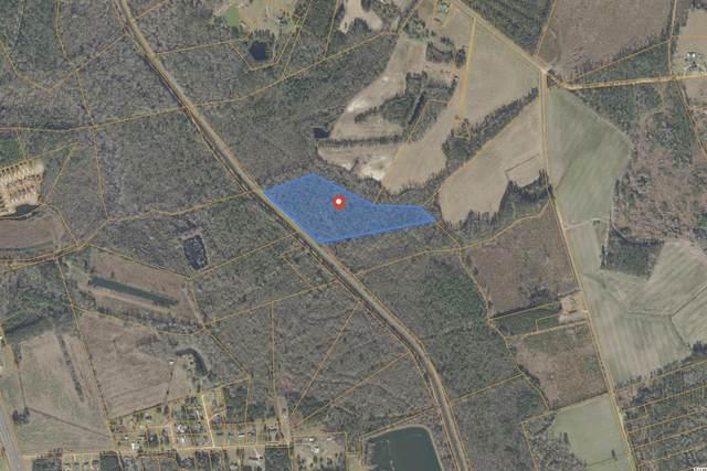 TBD Old Buck Creek Rd., Loris, SC 29569 (MLS #2120587) :: Coastal Tides Realty