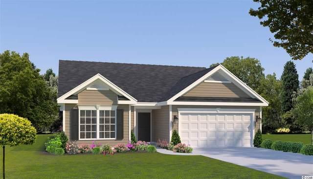 3813 Catchers Ct., Little River, SC 29566 (MLS #2120658) :: BRG Real Estate