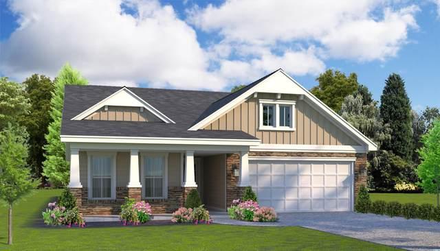 3809 Catchers Ct., Little River, SC 29566 (MLS #2120664) :: BRG Real Estate