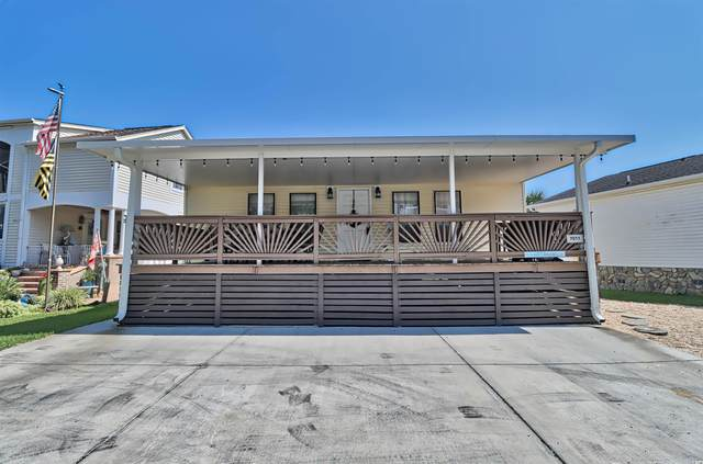 6001-7011 S Kings Hwy., Myrtle Beach, SC 29575 (MLS #2120712) :: Homeland Realty Group