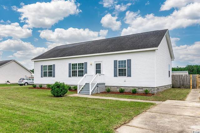 487 Hallie Martin Rd., Conway, SC 29527 (MLS #2120811) :: Jerry Pinkas Real Estate Experts, Inc