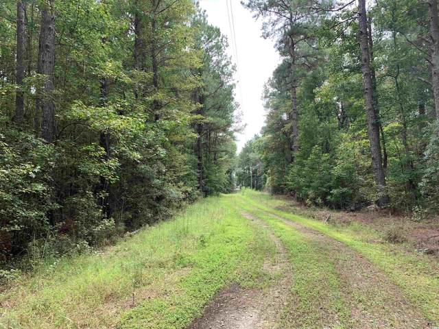 TBT Black River Rd., New Zion, SC 29111 (MLS #2120860) :: Grand Strand Homes & Land Realty