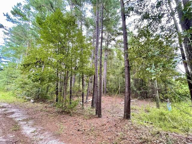 TBD First St., Conway, SC 29527 (MLS #2121074) :: Coldwell Banker Sea Coast Advantage