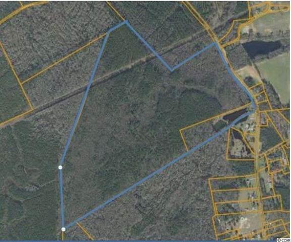 TBD Pee Dee Hwy., Conway, SC 29527 (MLS #2121115) :: Coldwell Banker Sea Coast Advantage