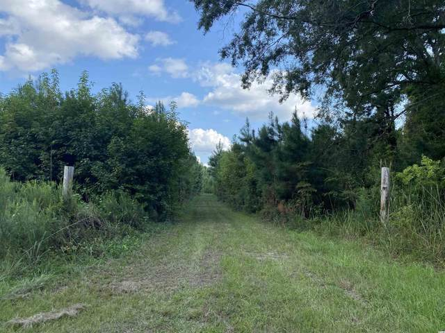 Old Taylor Rd., Kingstree, SC 29556 (MLS #2121351) :: Jerry Pinkas Real Estate Experts, Inc