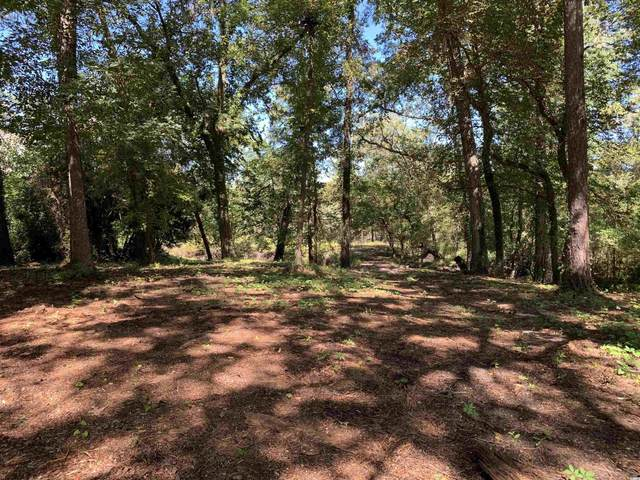 TBD Spring Lake Dr., Conway, SC 29526 (MLS #2121424) :: Surfside Realty Company