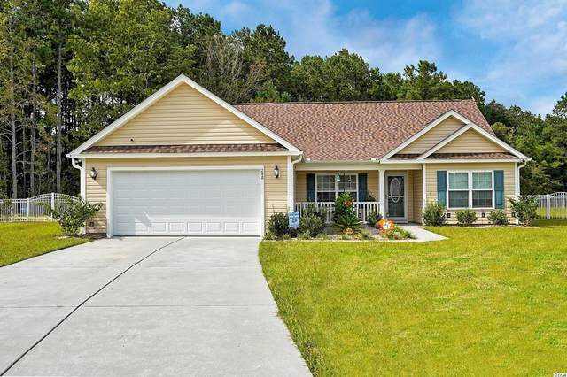 248 Timber Run Dr., Georgetown, SC 29440 (MLS #2121682) :: Grand Strand Homes & Land Realty