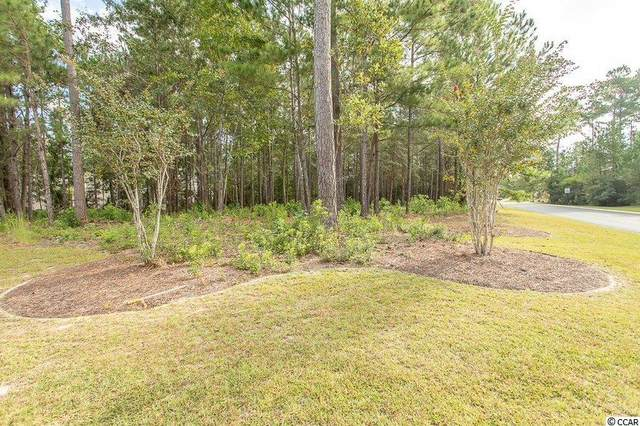 145 Camphill Circle, Murrells Inlet, SC 29576 (MLS #2122004) :: Sands Realty Group