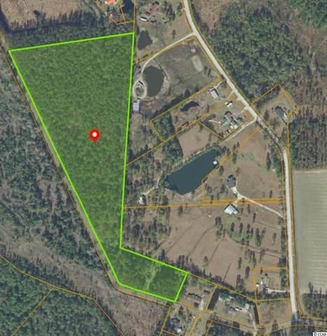 420 Apple Valley Rd., Loris, SC 29569 (MLS #2122366) :: Garden City Realty, Inc.