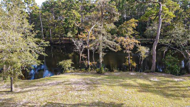 144 Lure Ct., Conway, SC 29526 (MLS #2122428) :: Jerry Pinkas Real Estate Experts, Inc